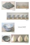 Hotsumi_shop2
